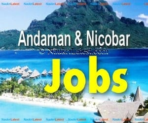 Andaman & Nicobar Jobs 2018: Apply for 224 Primary School